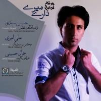 Erfan-Fadaei-Dari-Miri