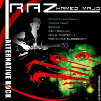 Hamed-Majd-Raaz