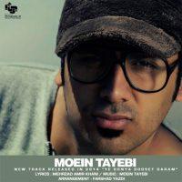 Moein-Tayebi-Ye-Donya-Doset-Daram