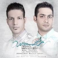 Naser_Mehrdad-Alavi-Razi-Nemisham