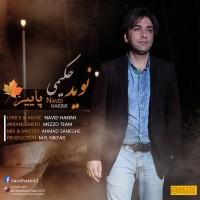 Navid-Hakimi-Paeez