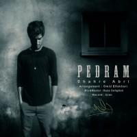 Pedram-Shahre-Abri