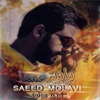 Saeed-Molavi-Paeez-Ghamha