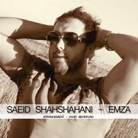 Saeed-Shahshahani-Emzaa