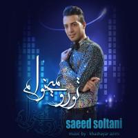 Saeed-Soltani-Toro-Mikham