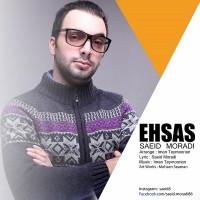 Saeid-Moradi-Ehsas