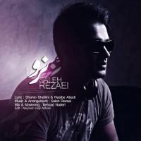 Saleh-Rezaei-Naro