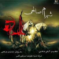 Shahram-Salehi-Alamdar