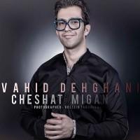 Vahid-Dehghani-Cheshat-Migan