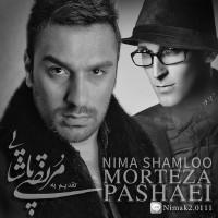 Nima-Shamloo-Morteza-Pashaie
