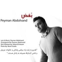 Peyman-Abdolvand-Boghz