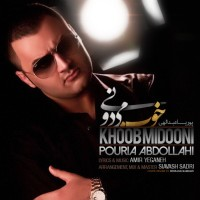 Pouria-Abdollahi-Khoob-Midooni