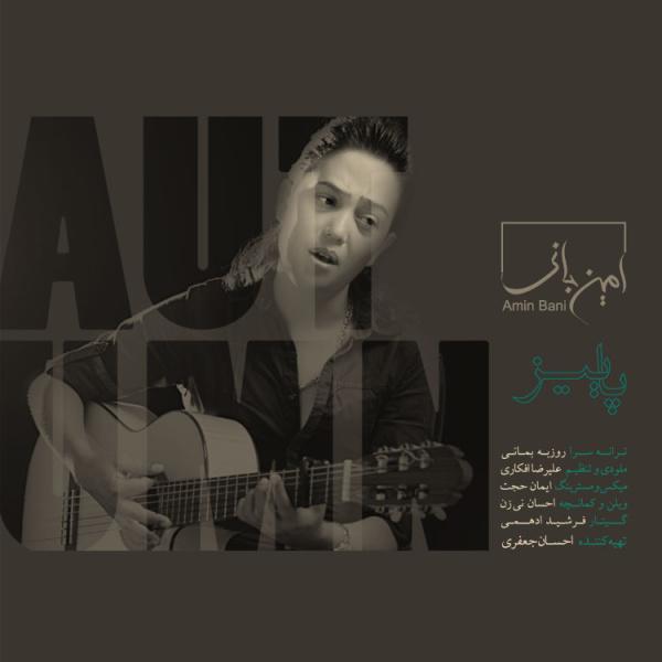 Amin Bani - Paeez