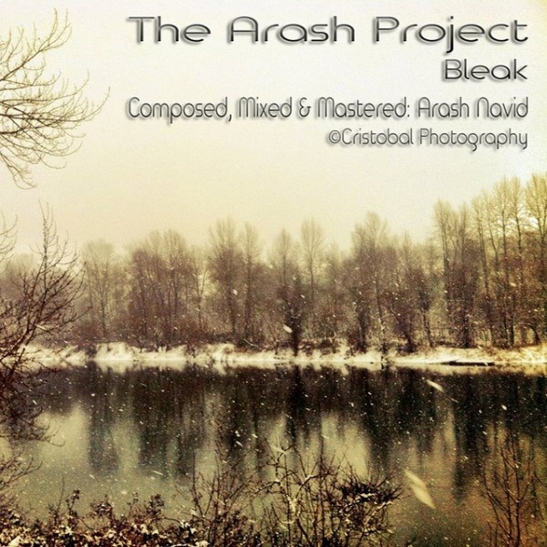 The Arash Project - Bleak