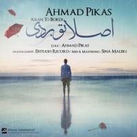 Ahmad-Pikas-Aslan-To-Bordi