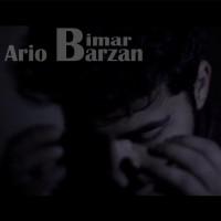 Ario-Barzan-Bimar