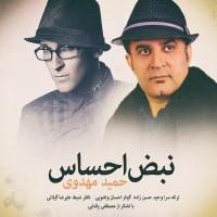 Hamid-Mahdavi-Nabze-Ehsas