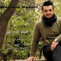 Meysam-Naderi-Bargard