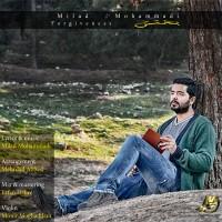 Milad-Mohammadi-Bakhshesh