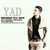 Mohammad-Reza-Moein-Yad