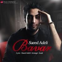 Saeed-Adeli-Bavar