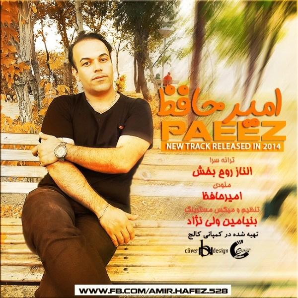 Amir Hafez - Paeez