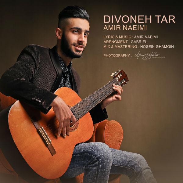 Amir Naeimi - Divoone Tar
