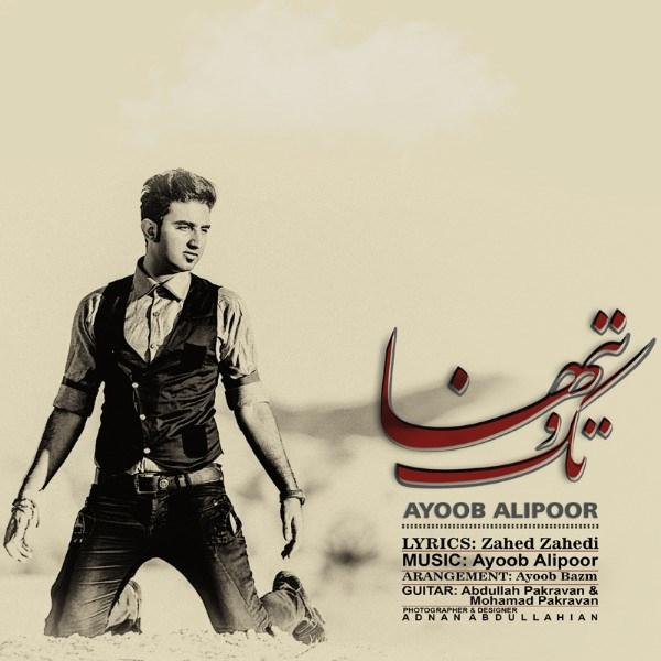 Ayoub Alipoor - Tako Tanha