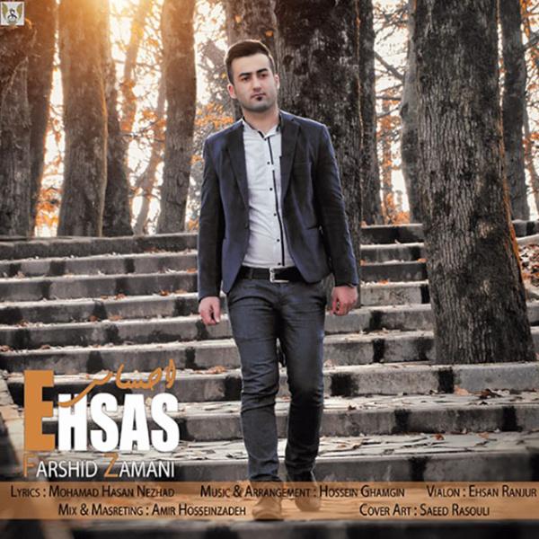 Farshid Zamani - Ehsas