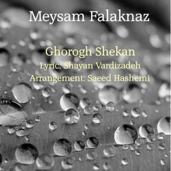 Meysam Falaknaz - Ghorogh Shekan