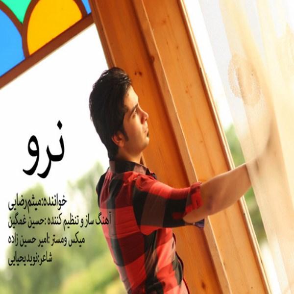 Meysam Rezaei - Naro