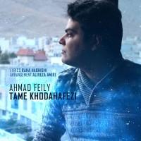 Ahmad-Feily-Taame-Khodahafezi