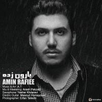 Amin-Rafiee-BaaroonZadeh