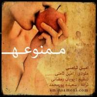 Amin-Sameni-Mamnooeh