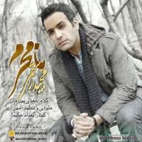 Majid-Rostami-Namahram