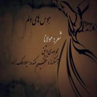 Mohammad-Mahdi-Vasigh-Havashaye-Delam