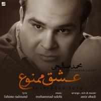 Mohammad-Salehi-Eshghe-Mamnoo