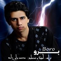 Mohammad-Valizadeh-Boro