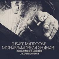 Mohammadreza-Ghahari-Ehsase-Mardoone