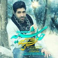 Mohsen-Amiri-Hashieh