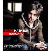 Ramin-Hashemi-Bargard