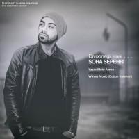 Soha-Sepehri-Divoonegi-Yani