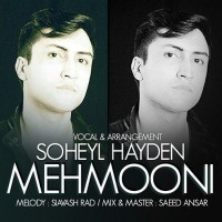 Soheil-Hayden-Mehmooni