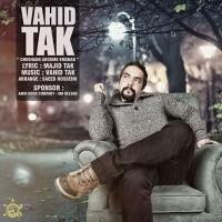 Vahid-Tak-Che-Ghadr-Aroome-Emshab