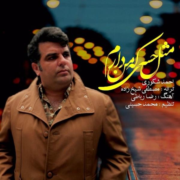 Ahmad Shakouri - Mesle Hesi Ke Man Daram