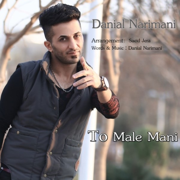 Danial Narimani - To Male Mani