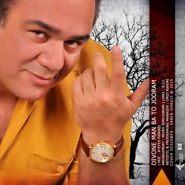 Mehdi Ghafourian - Divoone Ba To Man Jooram