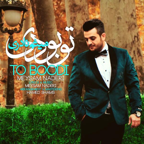 Meysam Naderi - To Boodi