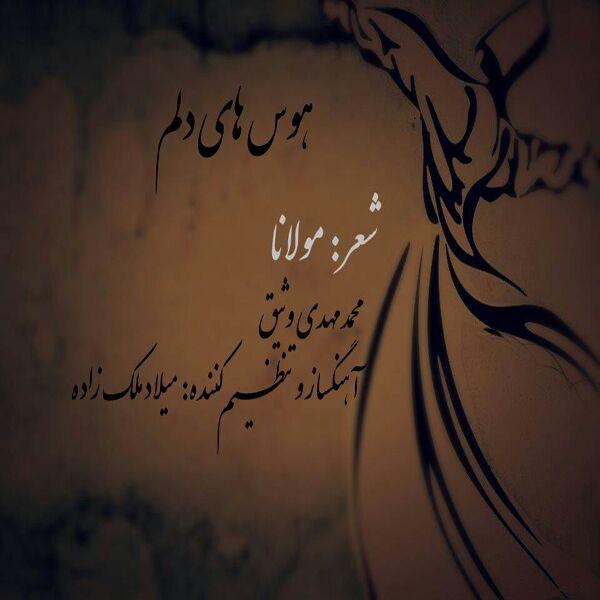 Mohammad Mahdi Vasigh - Havashaye Delam