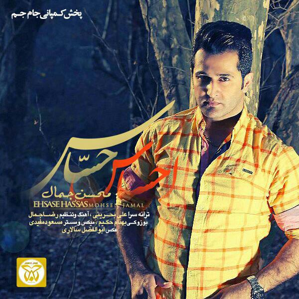 Mohsen Jamal - Ehsase Hasas
